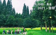 杨梅红教育成都杨梅红国际私立美校2020年终回顾